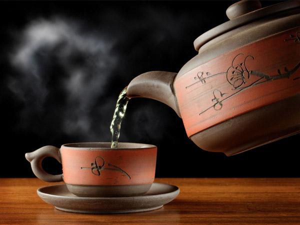 Ai nên uống trà khổ qua rừng