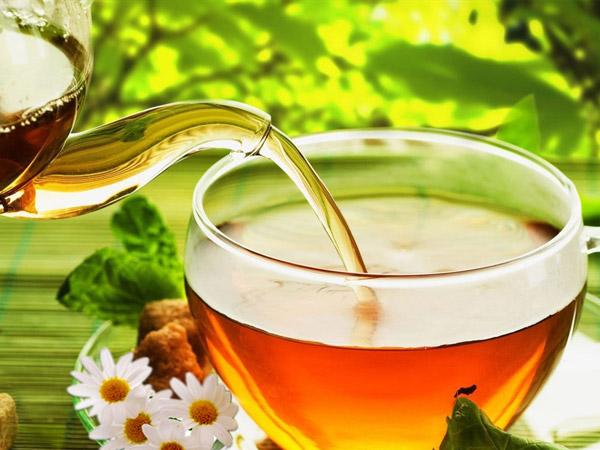Có nên uống trà khổ qua rừng mudaru không?