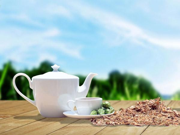 Địa chỉ bán trà khổ qua rừng Mudaru uy tín