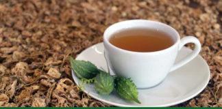 trà khổ qua chữa bệnh gì