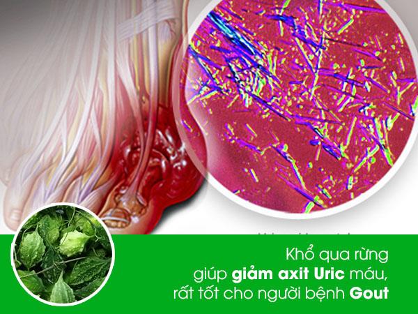 kho qua rung la thuc pham cho nguoi benh gout