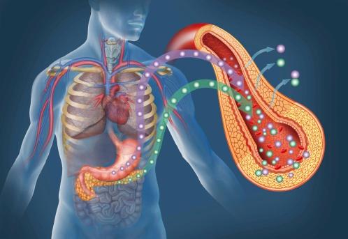 nước ép mướp đắng có tác dụng hỗ trợ điều trị ung thư tuyến tụy