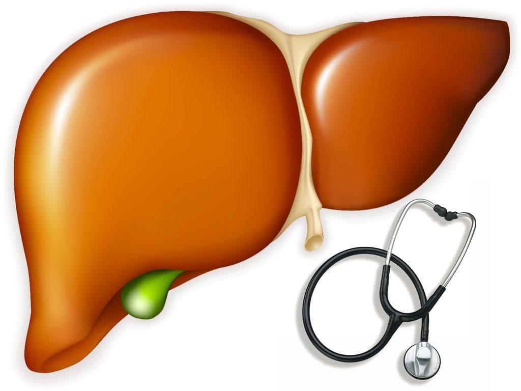Bổ gan Liver Life