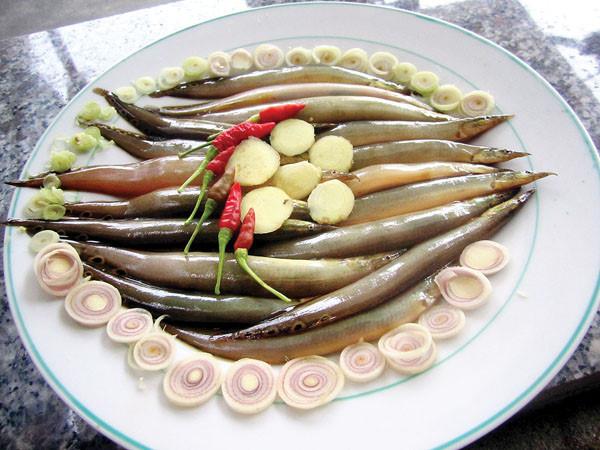 cá trạch - những thực phẩm cho người bị yếu sinh lý nam 2