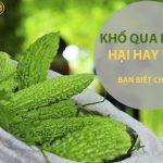 kho qua rung 3