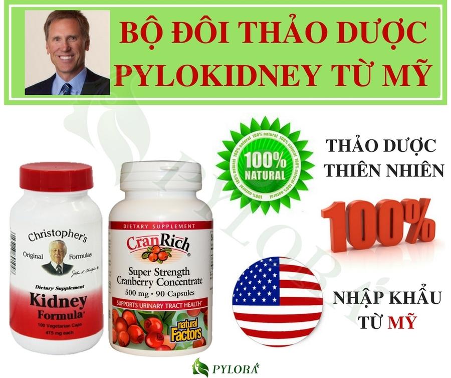thuốc phục hồi thận kidney formula