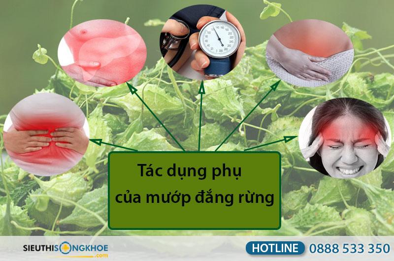 tac-dung-phu-cua-muop-dang-rung