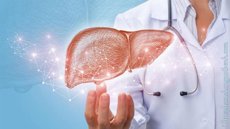 liver tonic capsule co tot khong