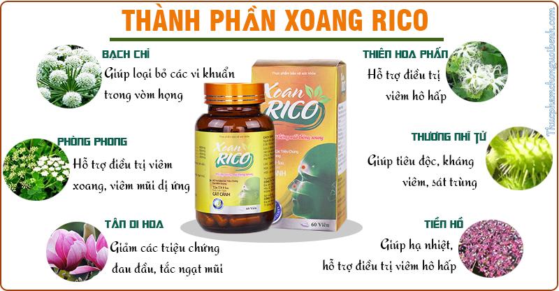 thành phần xoan rico