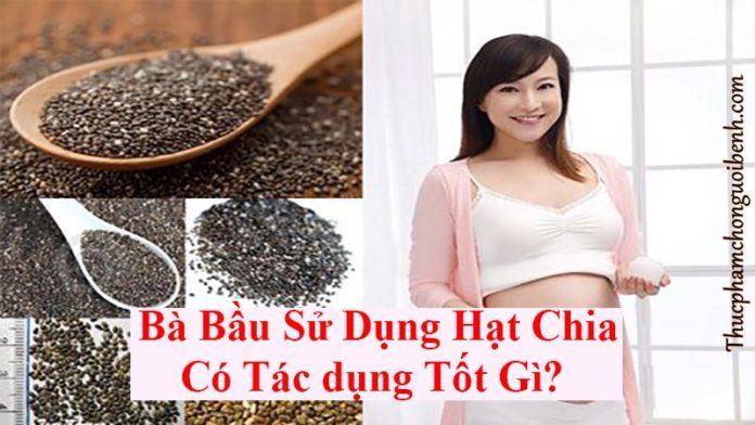co nen su dung hat chia cho ba bau